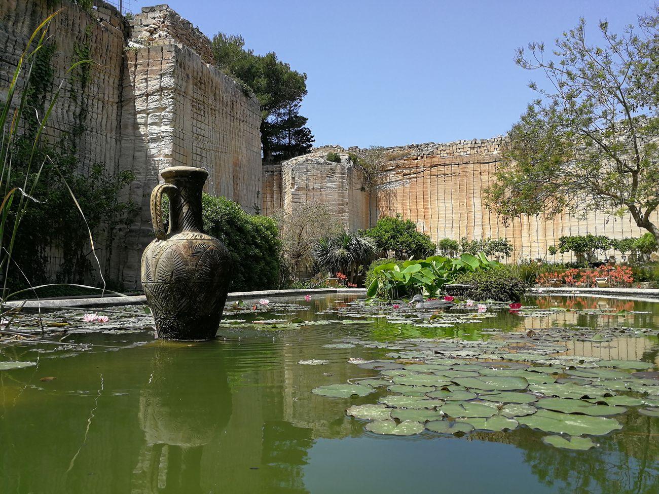 Il Giardino Impossibile. A Favignana